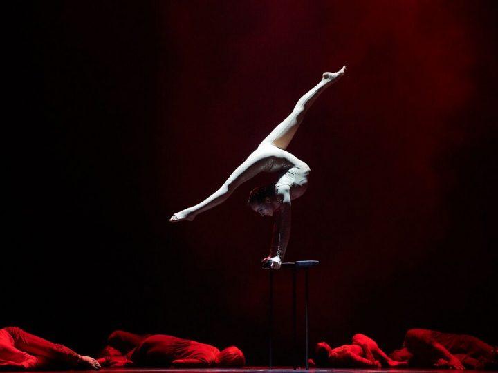 Cirque Éloize et Serge Fiori