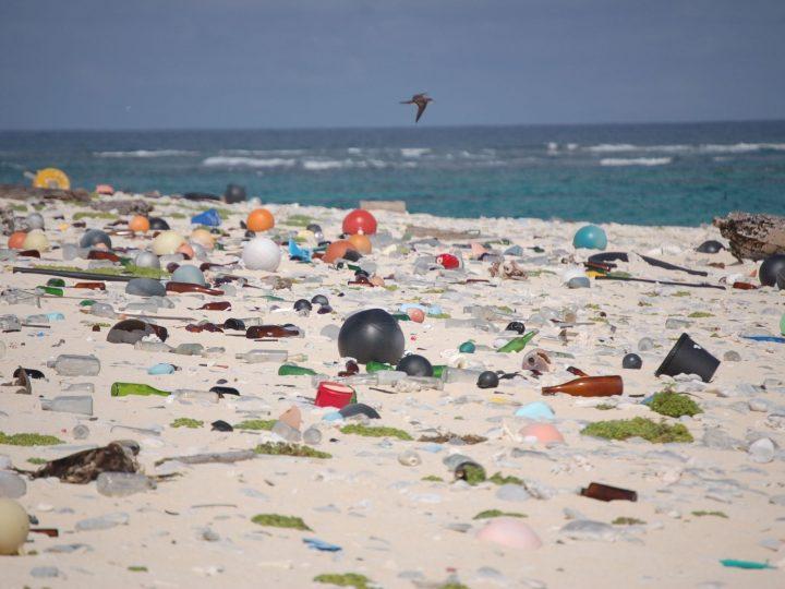Près de 9 Canadiens sur 10 contre l'usage unique des plastiques